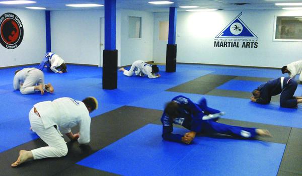 Gym Exercise Mat, Tatami Mat, EVA foam mat